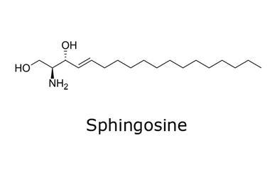 Chemical structure of sphingosine